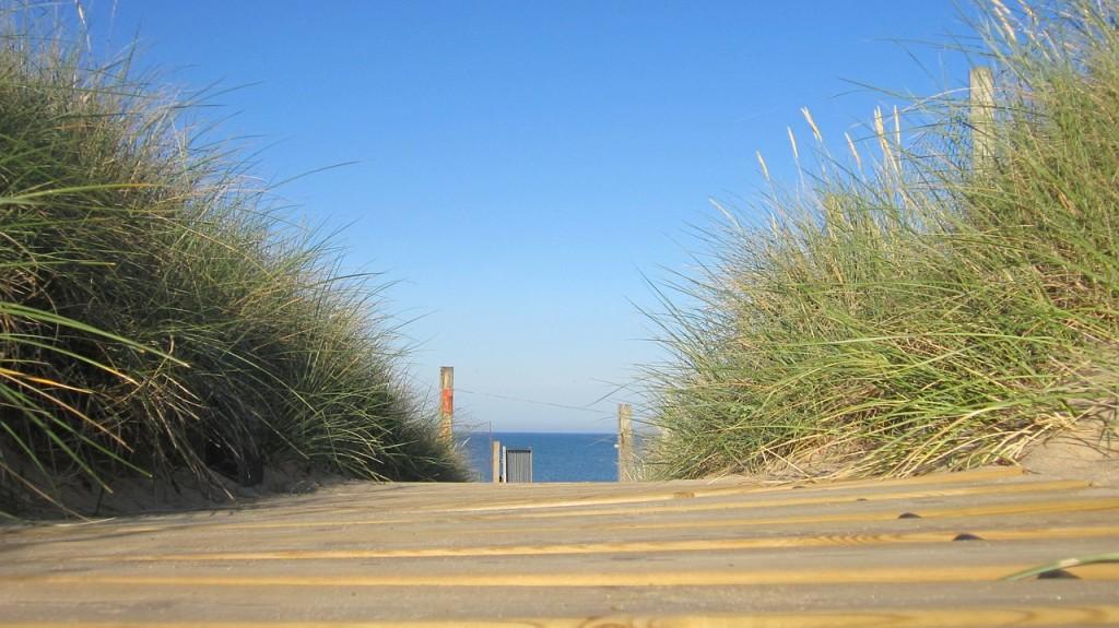 beach-109018_1280